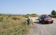 Alcalà, les Brigades Forestals desbrossen els terrenys del terme municipal