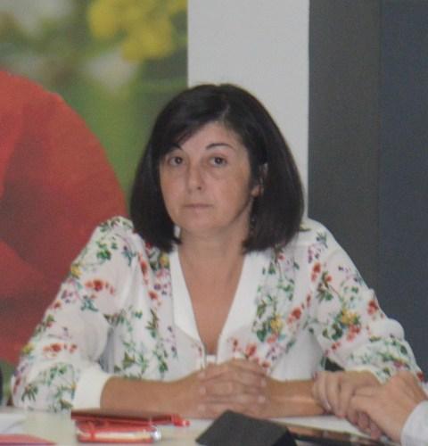 El PSPV denuncia que l'AVE Castelló Madrid ha patit nous problemes de connexió