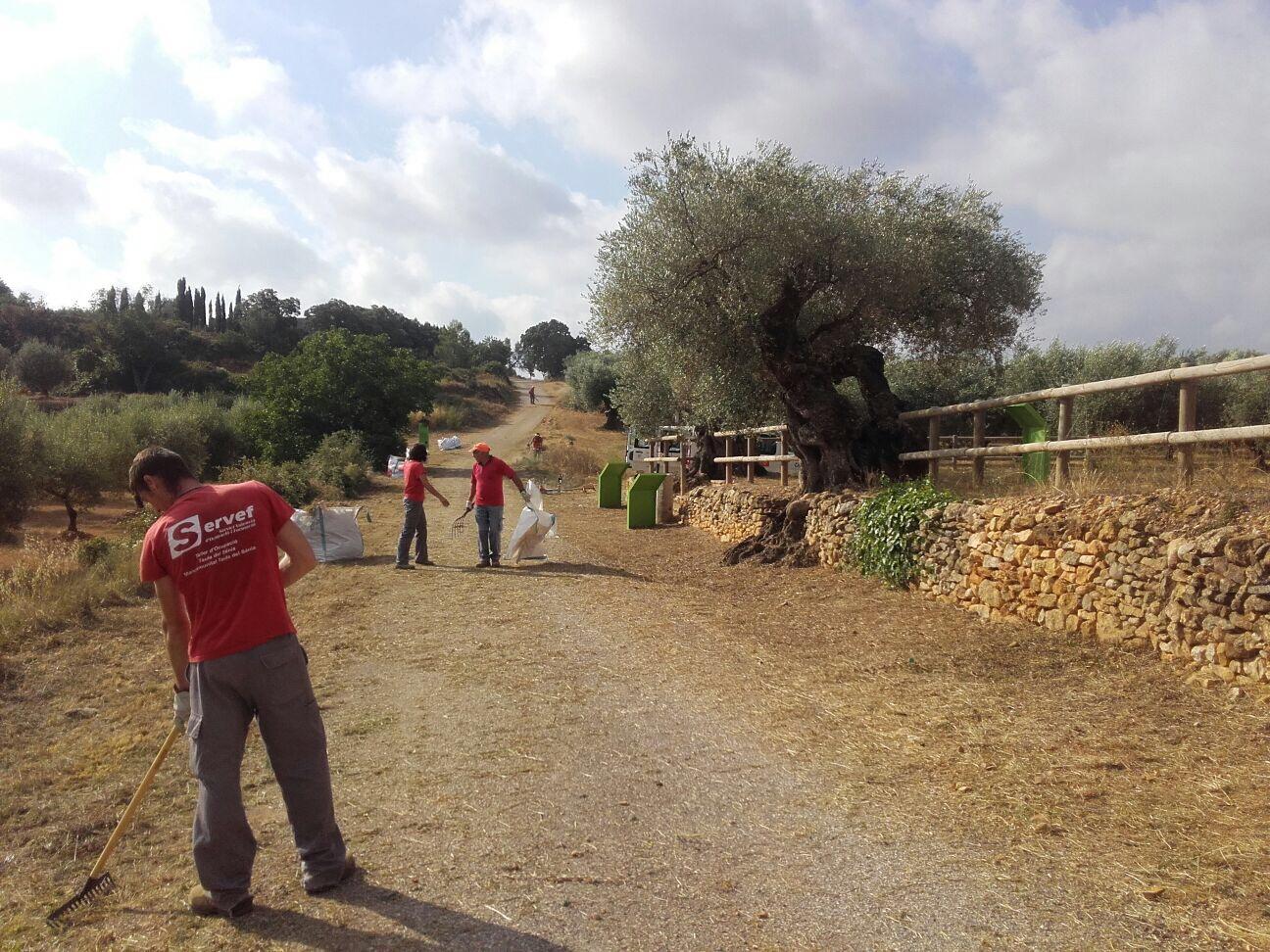 La Jana, els alumnes del taller d'ocupació de la Mancomunitat netegen els espais naturals