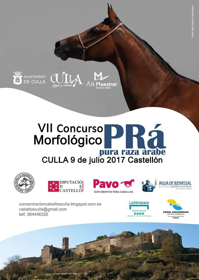 Culla celebrarà diumenge el 7é Concurs Morfològic de Cavalls