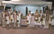 Vinaròs; nit del llagostí 10-08-2017