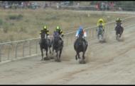La Sénia va celebrar dissabte les curses de cavalls i rucs en motiu de les Festes Majors