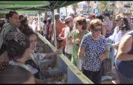 Peníscola, centenars de persones participen en el Dia del Turista