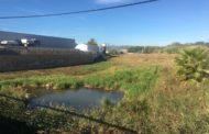 Benicarló, la Brigada Municipal neteja els barrancs i sèquies de la localitat