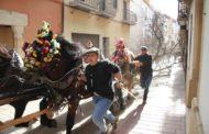 Albocàsser celebra la festa de Sant Antoni amb les tradicionals Rossegades