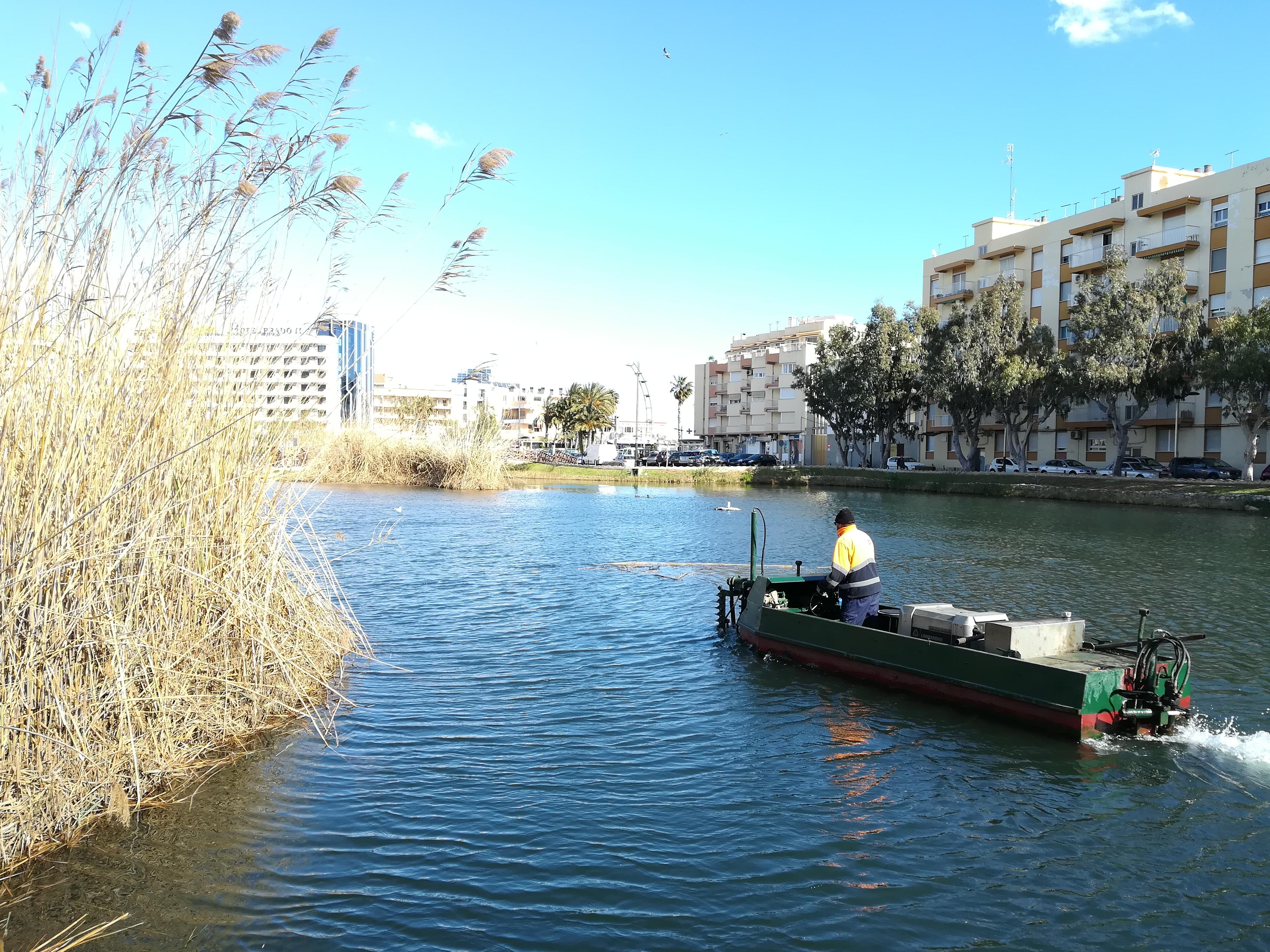 Peníscola, l'Ajuntament inicia les tasques de neteja de les restes vegetals a la marjal