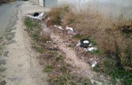 Alcalà, Compromís assegura que la neteja del camí la Foia s'està executant gràcies a les demandes de la formació