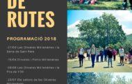Canet lo Roig programa noves visites guiades per les oliveres mil·lenàries
