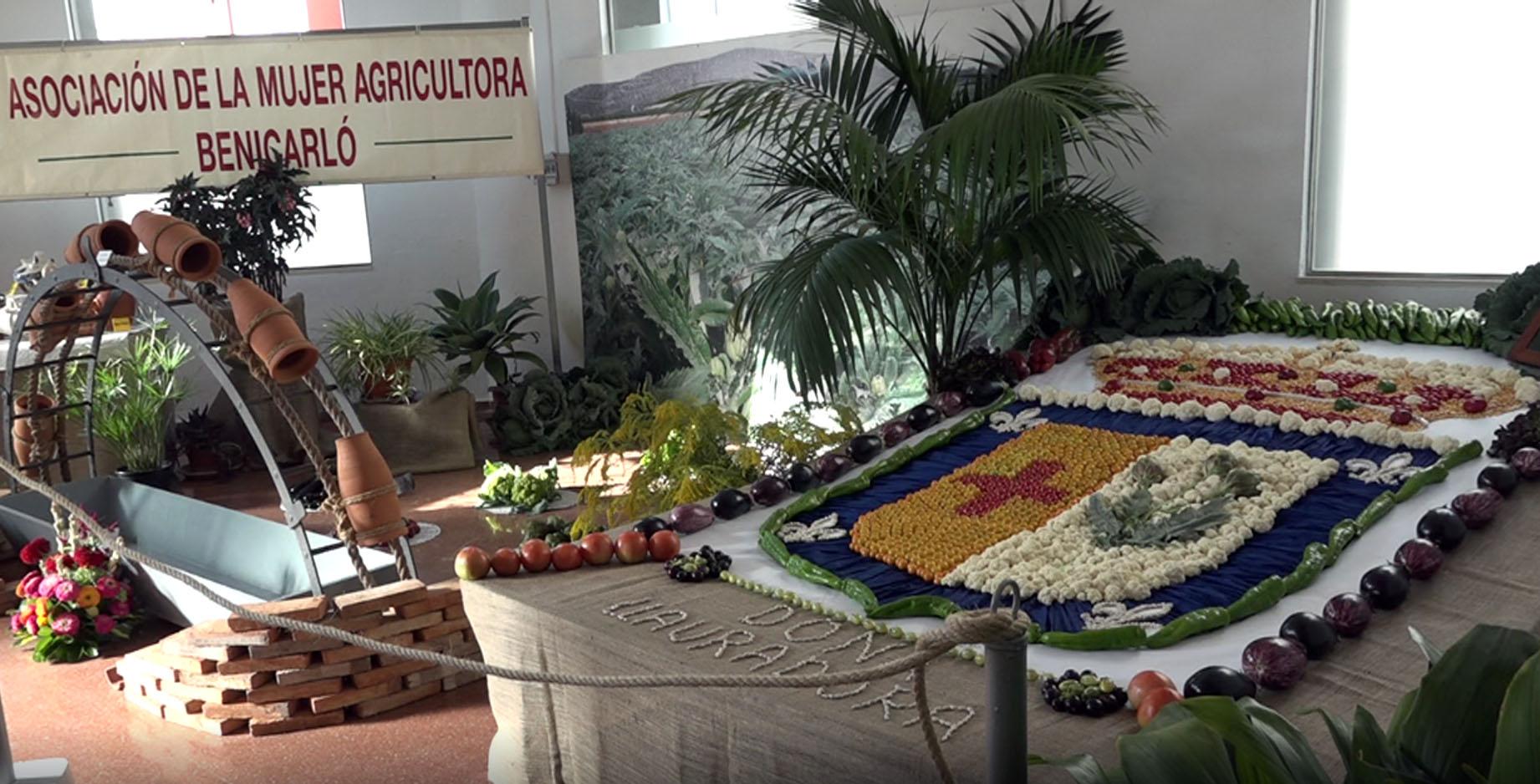 Benicarló, centenars de persones visiten la 72a Exposició de Productes del Camp i Eines Agrícoles