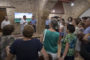 Compromís exigeix al Govern Central més mesures contra la Xylella Fastidosa