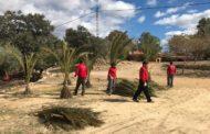 Càlig, els alumnes del Taller d'Ocupació de la Taula del Sénia actuen en el paratge de l'ermita dels Socors