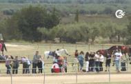 La Sénia; Cursa de cavalls 06-05-2018
