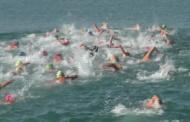 Vinaròs, més de 150 nedadors van participar diumenge en la 58a Travessia al port