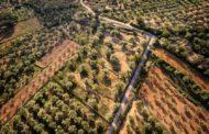 La Jana aprova la reducció progressiva de la taxa de camins per a les explotacions ramaderes i agràries
