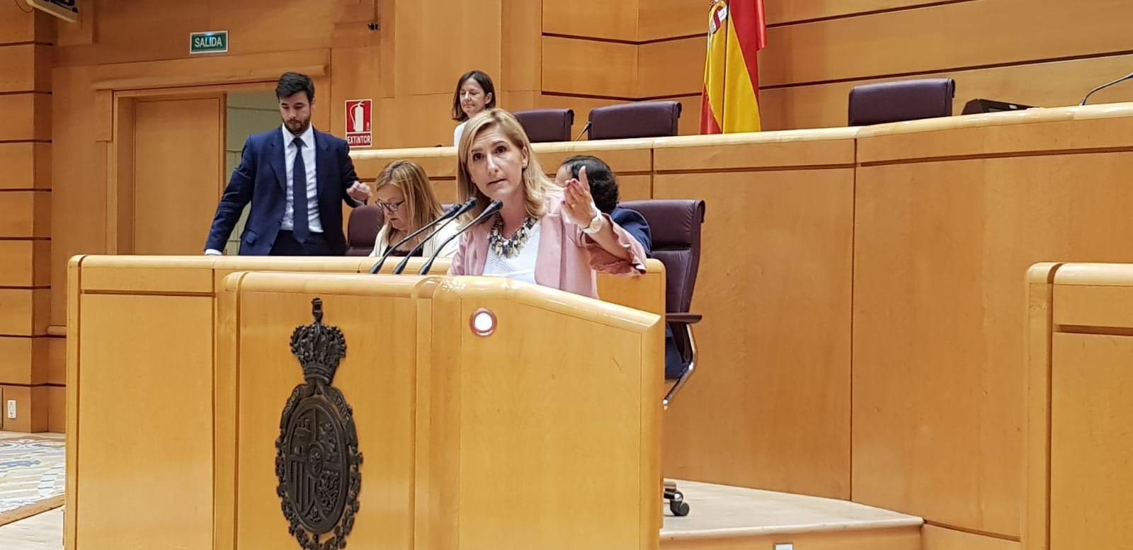 El PP informa que el Senat, llevat del PSOE, aprova aplicar les bonificacions de l'AP7 al Comunitat Valenciana