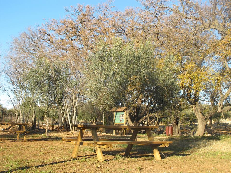 La Jana, l'Ajuntament executa millores a l'entorn natural del municipi