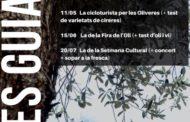 Canet, comença la nova temporada de visites guiades a les oliveres mil·lenàries