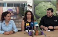 Benicarló; Balanç de la campanya 2018-2019 de la Carxofa de Benicarló Denominació d'Origen Protegida 04-06-2019