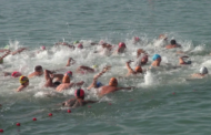 Vinaròs, més de 150 nedadors participen en la 59a Travessia del Port
