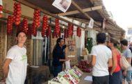 Alcalà, els productors locals venen 5.500 quilos durant la Fira de la Tomata de Penjar