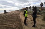 Peníscola; Avancen els treballs de regeneració i neteja de canalitzacions en la platja Nord