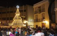 La màgia del Nadal ja il·lumina els carrers i comerços d'Alcanar