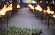 2000 quilos de carxofa a la brasa per a la gran degustació popular de Benicarló