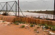 LA UNIÓ informa que les pèrdues directes provisionals en cultius per la borrasca Glòria és d'uns 24 milions d'euro