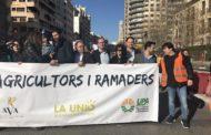 Blanch (PSPV-PSOE) avala la Llei de la Cadena Alimentària com a mesura per a regular els preus de venda dels productes agrícoles