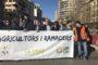 El PP presentarà una declaració institucional en Les Corts per a aconseguir la unitat en defensa de l'agricultura valenciana