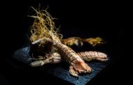 Arrenca el calendari gastronòmic 2020 amb les XII Jornades de la Cuina de la Galera de Vinaròs