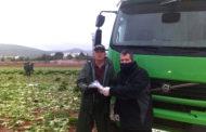 El regidor d'Agricultura de Peníscola fa lliurament de les mascaretes als llauradors