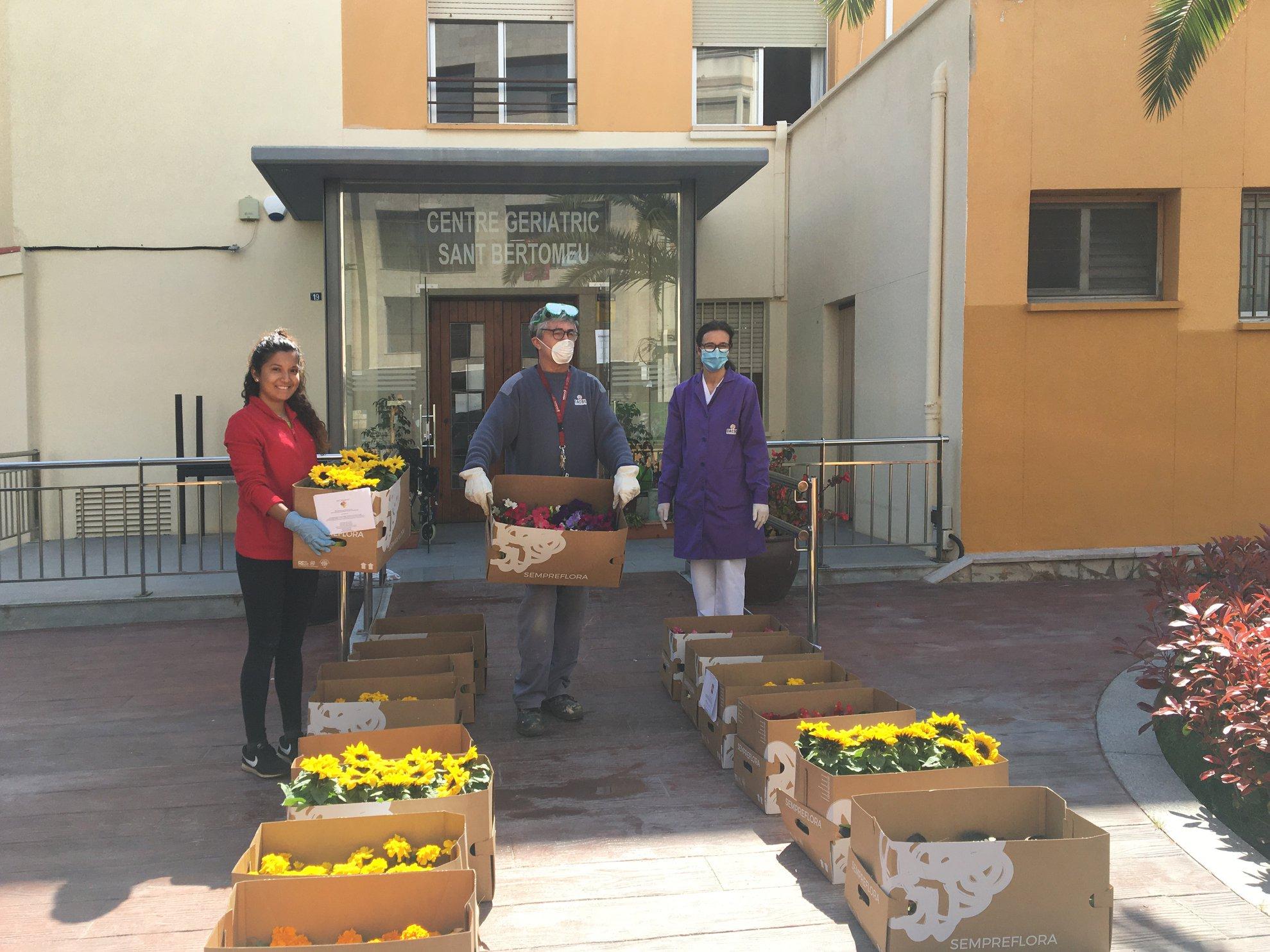 L'empresa SempreFlora de Benicarló agraeix amb plantes el treball d'aquells que estan en primera línia