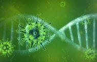Sanitat notifica 185 nous casos de coronavirus i 176 altes en la Comunitat Valenciana
