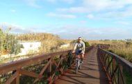 Peníscola intervé en la neteja de la marjal i demana a la Generalitat doble passarel·la de fusta per al recorregut