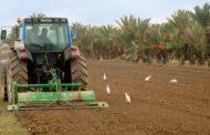 Agricultura subvenciona fins al 40% de les inversions dels plans de modernització