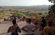 La ruta per les oliveres de Canet lo Roig congrega un nodrit nombre de participants