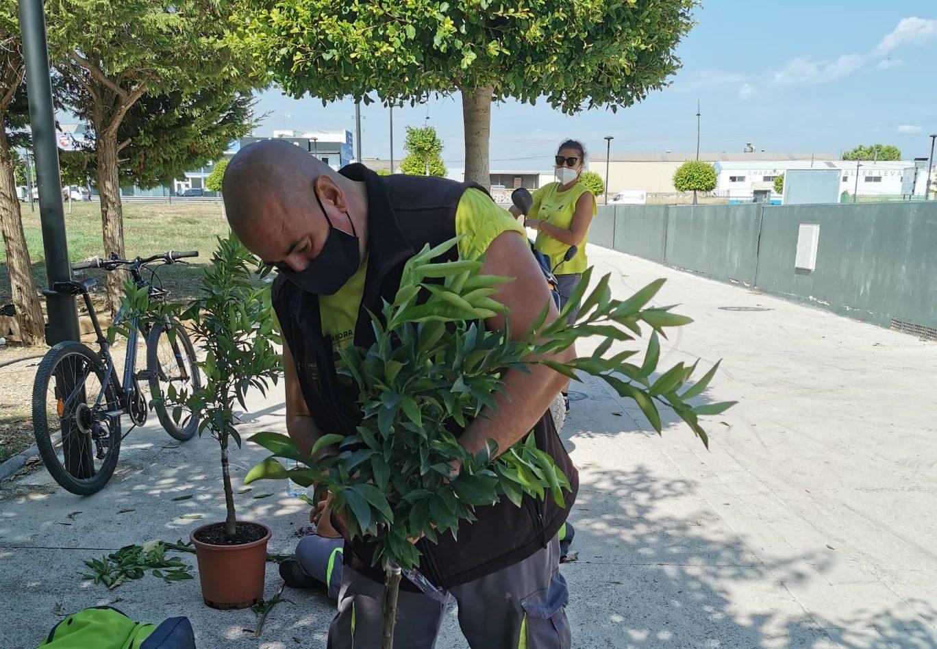 El taller d'Ocupació de Benicarló continua la formació i les pràctiques