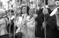 Cultura incoa expedient per a declarar Bé Immaterial de Rellevància Local les Festes de la Mare de Déu dels Àngels