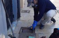 L'Ajuntament de Vinaròs reforça els tractaments contra els rosegadors