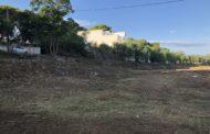 Les Brigades de Mitigació de Riscos continuen esbrossant la rambla d'Alcalà a Santa Magdalena
