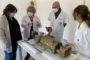 La Diputació referma l'aposta per la recuperació del Santuari del Penyagolosa i restaurarà la talla de Sant Joan
