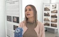 Alcalà de Xivert-Alcossebre; La col·lecció museogràfica d'Alcalà-Alcossebre rep el reconeixement de la Generalitat 16-11-2020