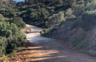 La conselleria d'Agricultura millora el camí del barranc de la Carrera a SantaMagdalena