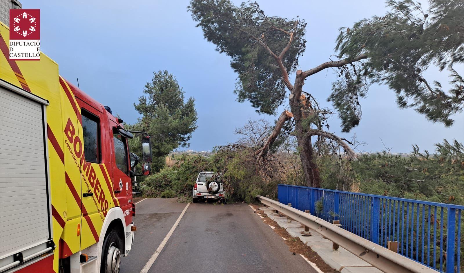 Els Bombers de la Diputació efectuen 33 actuacions al llarg del dia a causa del temporal de vent