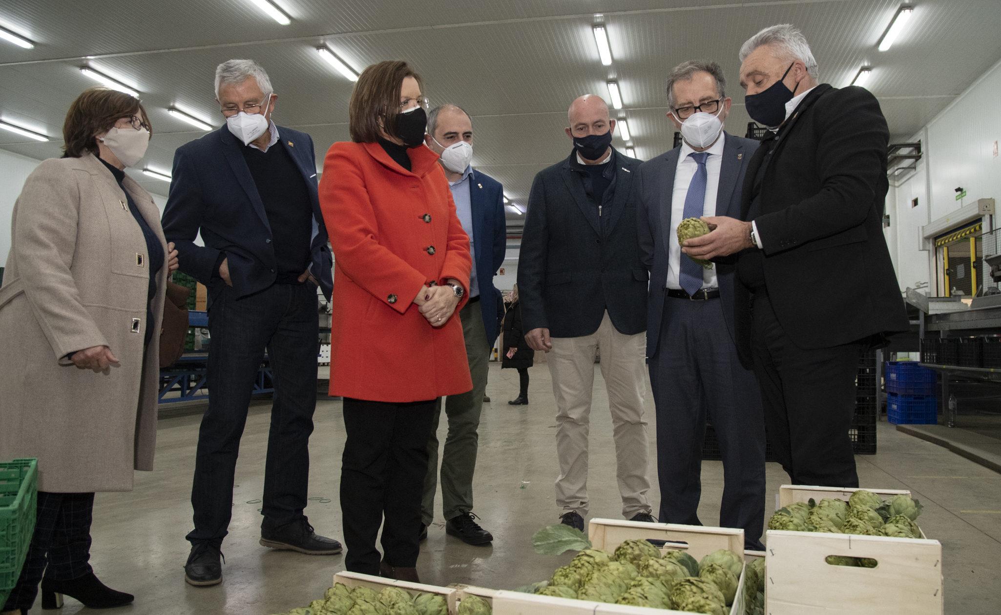 Martí visita Benihortde Benicarló per a polsar el sentir del sector i traslladar-li el suport de la Diputació
