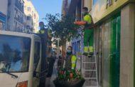 L'Ajuntament de Vinaròs realitza el manteniment de les zones enjardinades