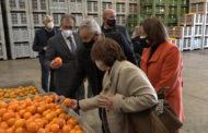 Benicarló; Visita del president de la Diputació de Castelló a les instal·lacions de Benihort de Benicarló 22-01-2021