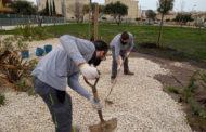 L'alumnat del taller d'ocupació de Benicarló realitza pràctiques al parc verd de l'avinguda Maestrat