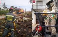 Els bombersactuenen un incendi de vegetació a Vinaròs i en la retirada d'un eixam d'abelles a Càlig